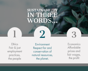Environment, Ethics, Economics summarizes a sustainable journey