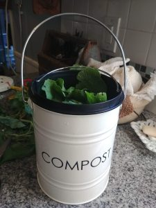 worm composting basics